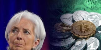 Head of International Monetary Fund (IMF) Praises Bitcoin