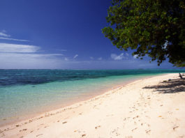 Marshall Islands to issue national cryptocurrency in 2019 - Crypto Reporter