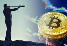 Cryptocurrency-Behaviour-Study-Confirms-MetCalfes-Law-Applies-to-Bitcoin-in-the-Long-Term