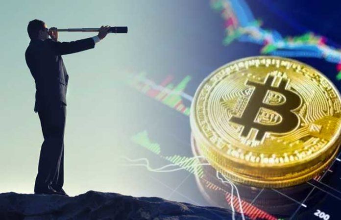 Which cryptocurrency to buy long term