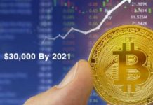 Cryptocurrency Price Analyst Predicts Bitcoin (BTC) to Reach $30,000 By 2021