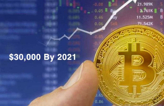 Cryptocurrency Price Analyst Predicts Bitcoin (BTC) for at nå $ 30,000 ved 2021