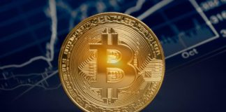 Forget Bitcoin! I think doing next-to-nothing could be a better way to get rich