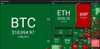 One-year crypto performance