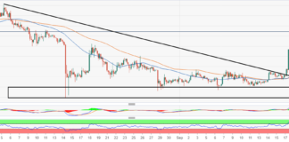 XRP/USD ballistic 7% rise could save Ripple from the disgruntled XRM community
