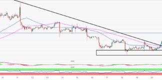 BTC/USD brushes shoulders with $8,300, where to next?